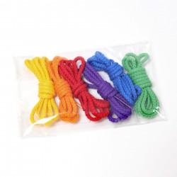 Koorden om te rijgen regenboog kleuren