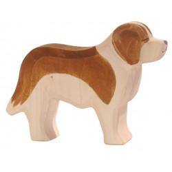 Sint-Bernard hond