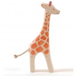 Giraffe staand