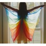 Sarah's Silks Speelzijden Vleugels regenboog