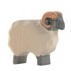 Heidschnucke Ram