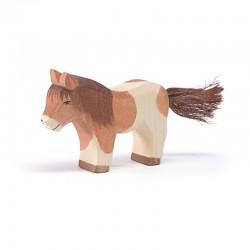 Shetland Pony staand