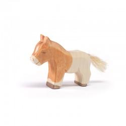Shetland Pony veulen