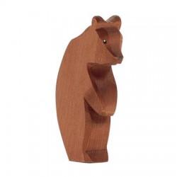 Grote beer staand kop laag
