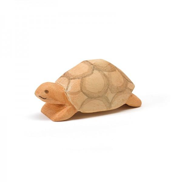 Ostheimer Schildpad nieuw 2017