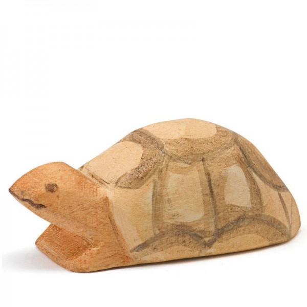 Ostheimer Schildpad klein - nieuw 2017